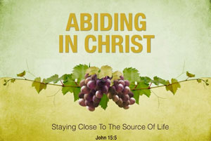 Abiding in Christ - I am the Vine