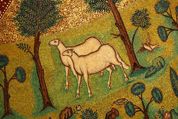 """""""Sheep in Paradise"""" from Basilica of Sant' Apollinare in Classe"""