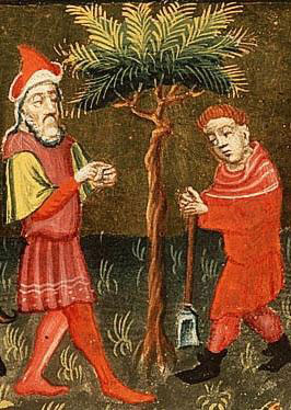 Parable of the Barren Fig Tree - Alexander Master